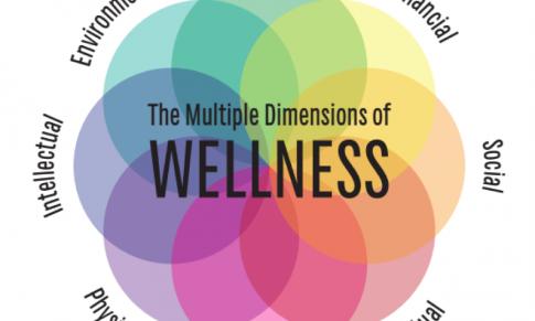 Wellness en todas las vertientes de tu vida