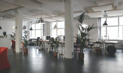 ¿Cómo se verá tu oficina después de la pandemia?