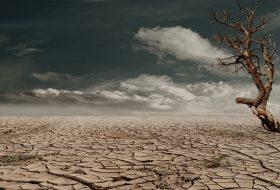 ¿Qué hemos aprendido durante la pandemia sobre la lucha contra el cambio climático?